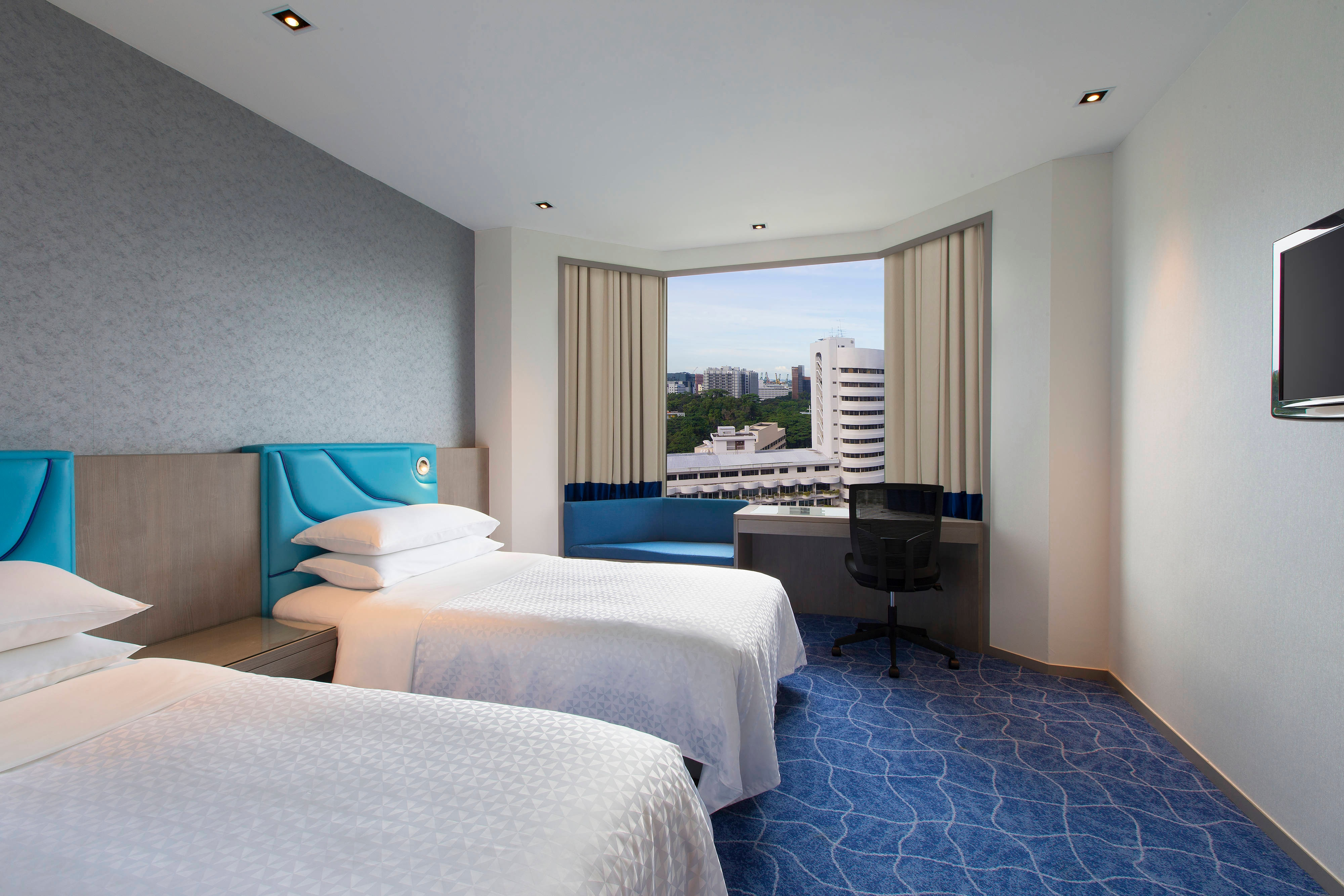 Twin Deluxe Guest Room City View