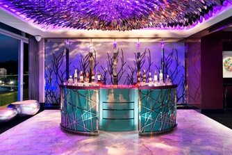 Extreme WOW Suite - Bar