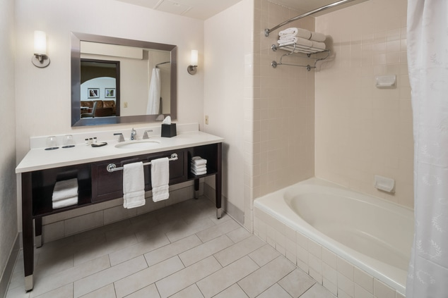 King Bathroom Accessible Deluxe