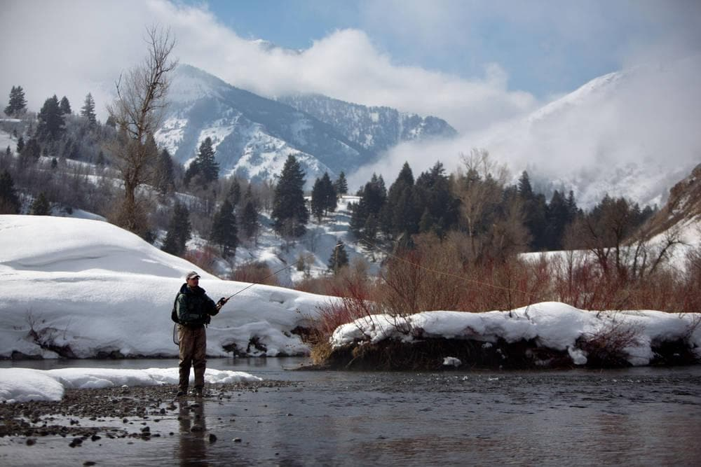 Provo River Fishing