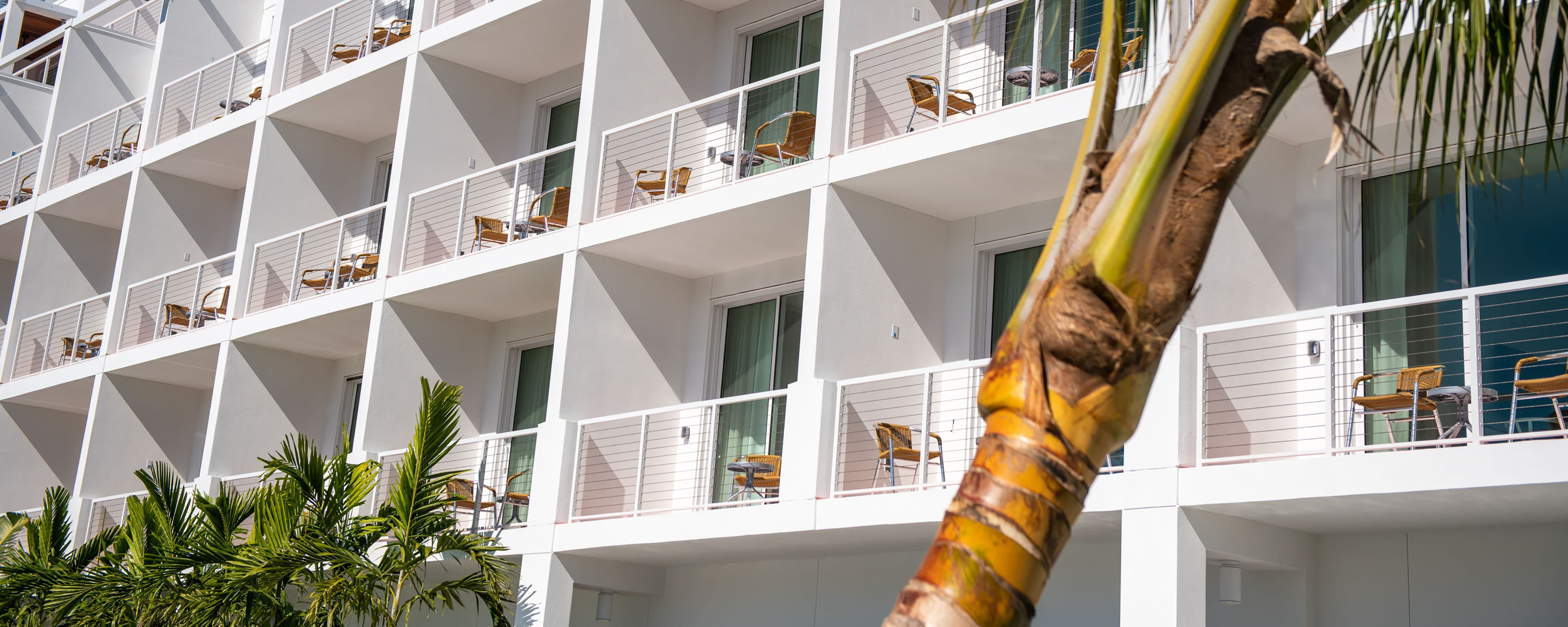 Strange Suites And Hotel Rooms In Sarasota Florida The Sarasota Theyellowbook Wood Chair Design Ideas Theyellowbookinfo