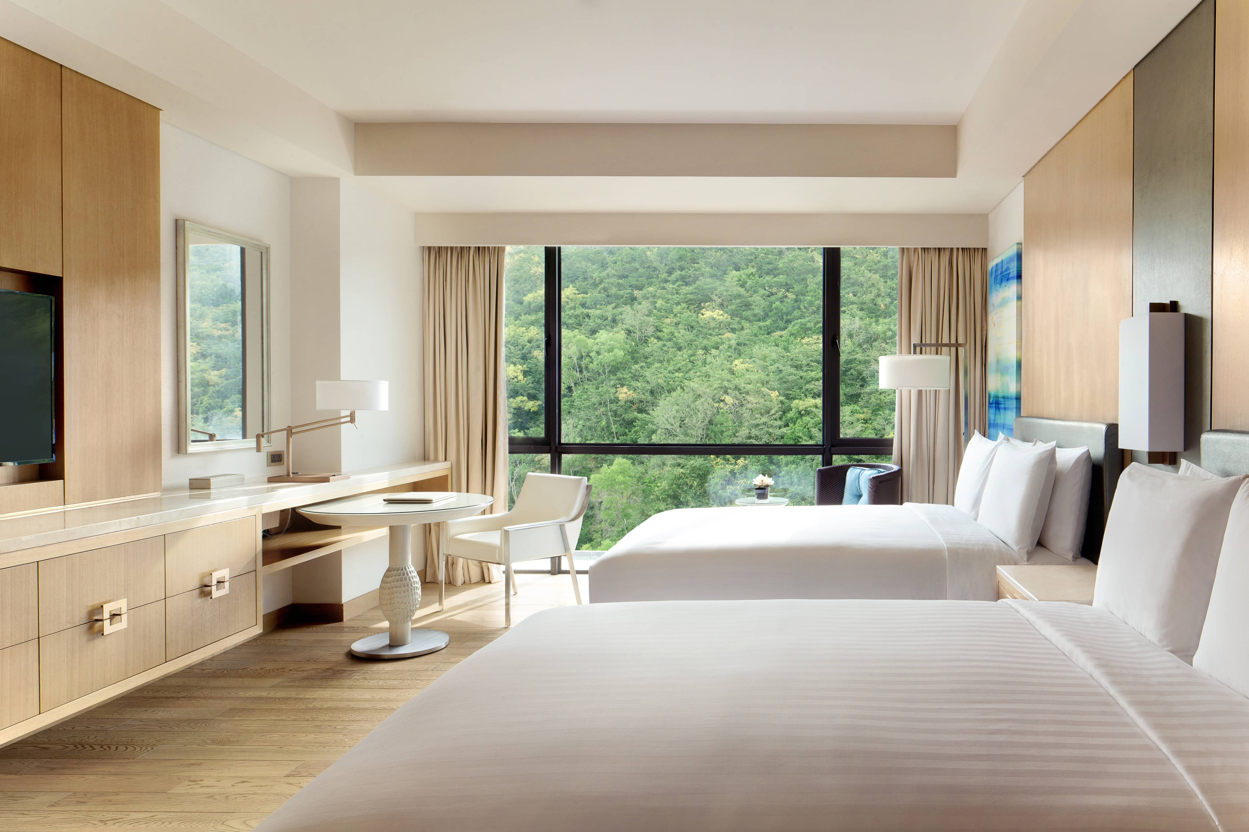 Double/Double Mountain View Room