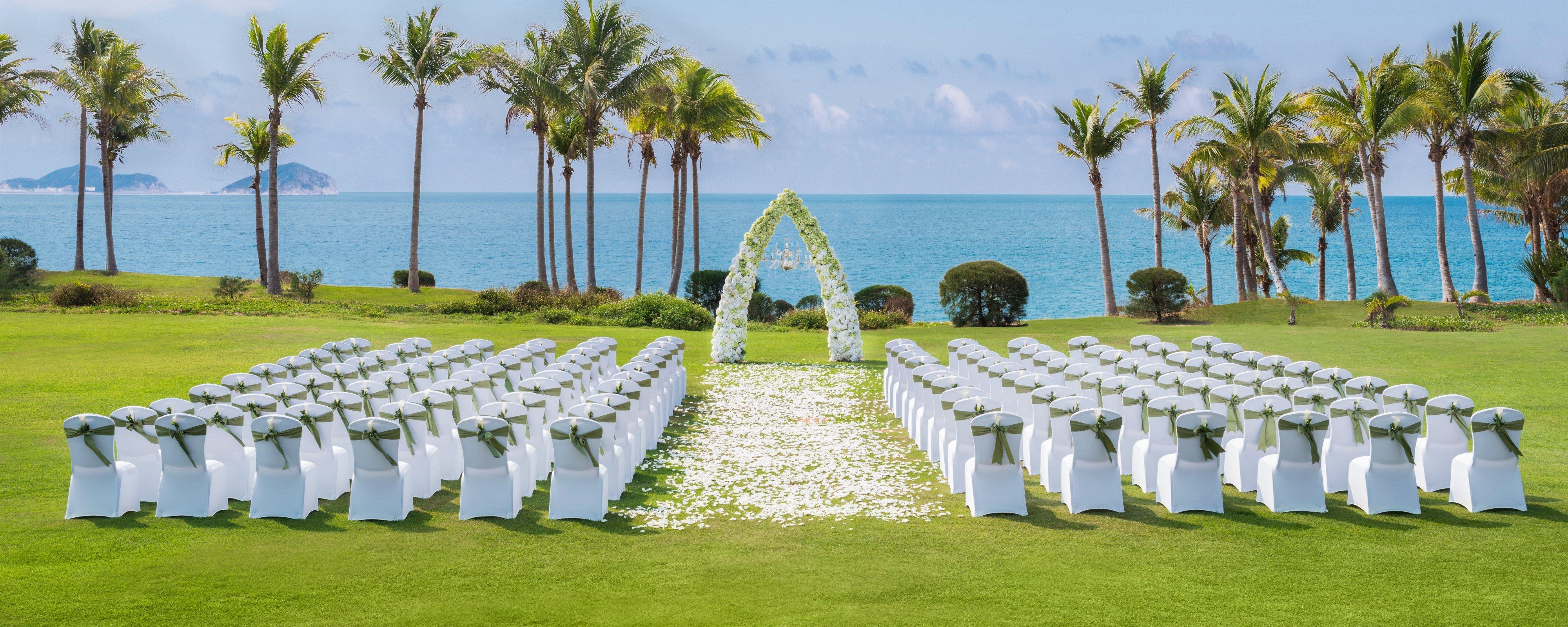 Wedding at Beach Lawn