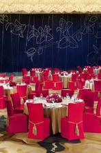 Ballroom - Chinese Dinner