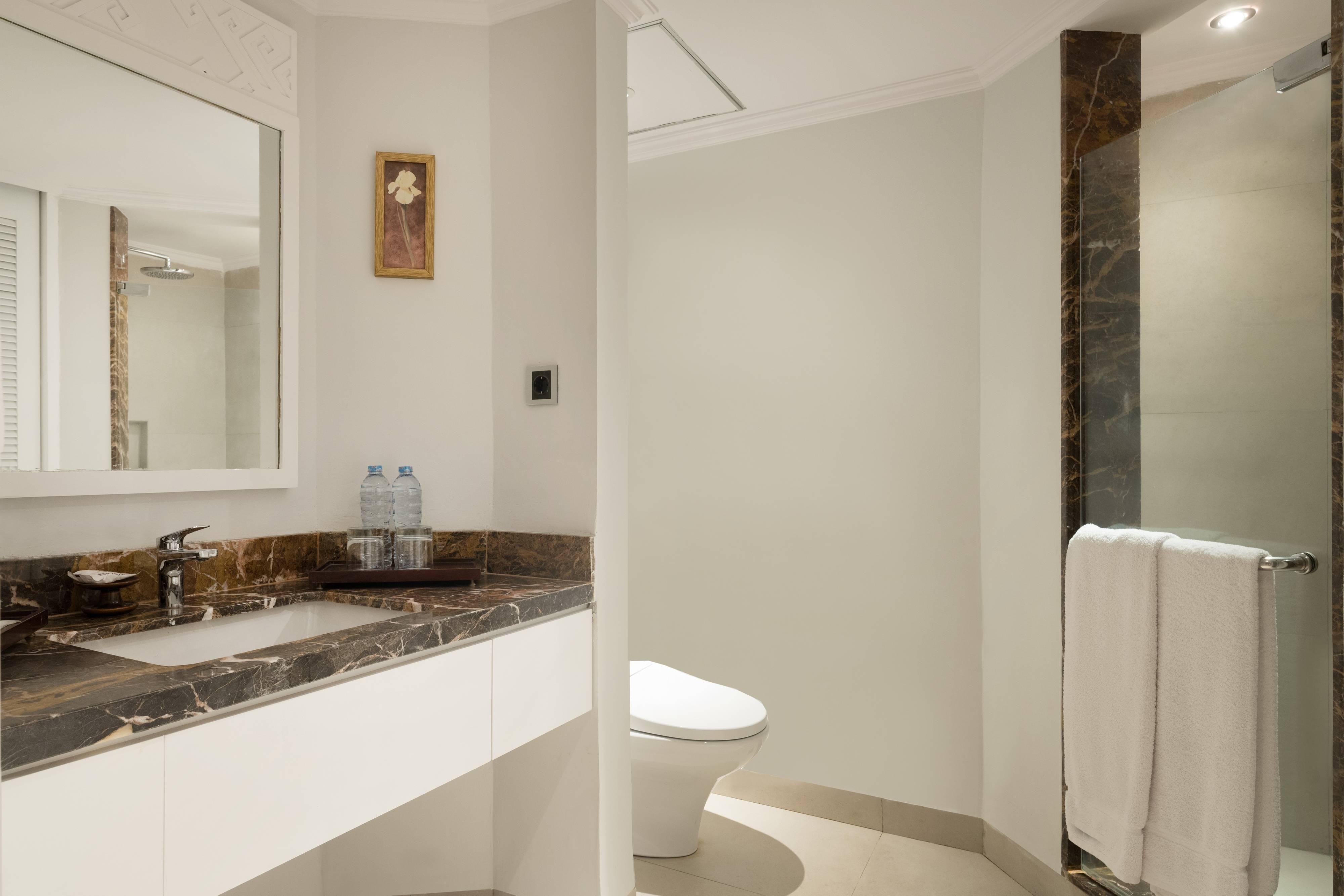 Deluxe Guest Bathroom