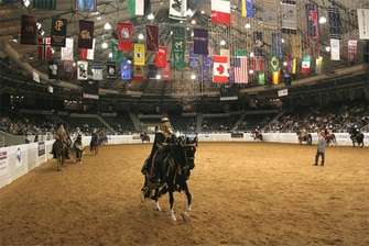 Tulsa Arabian National Horse Show