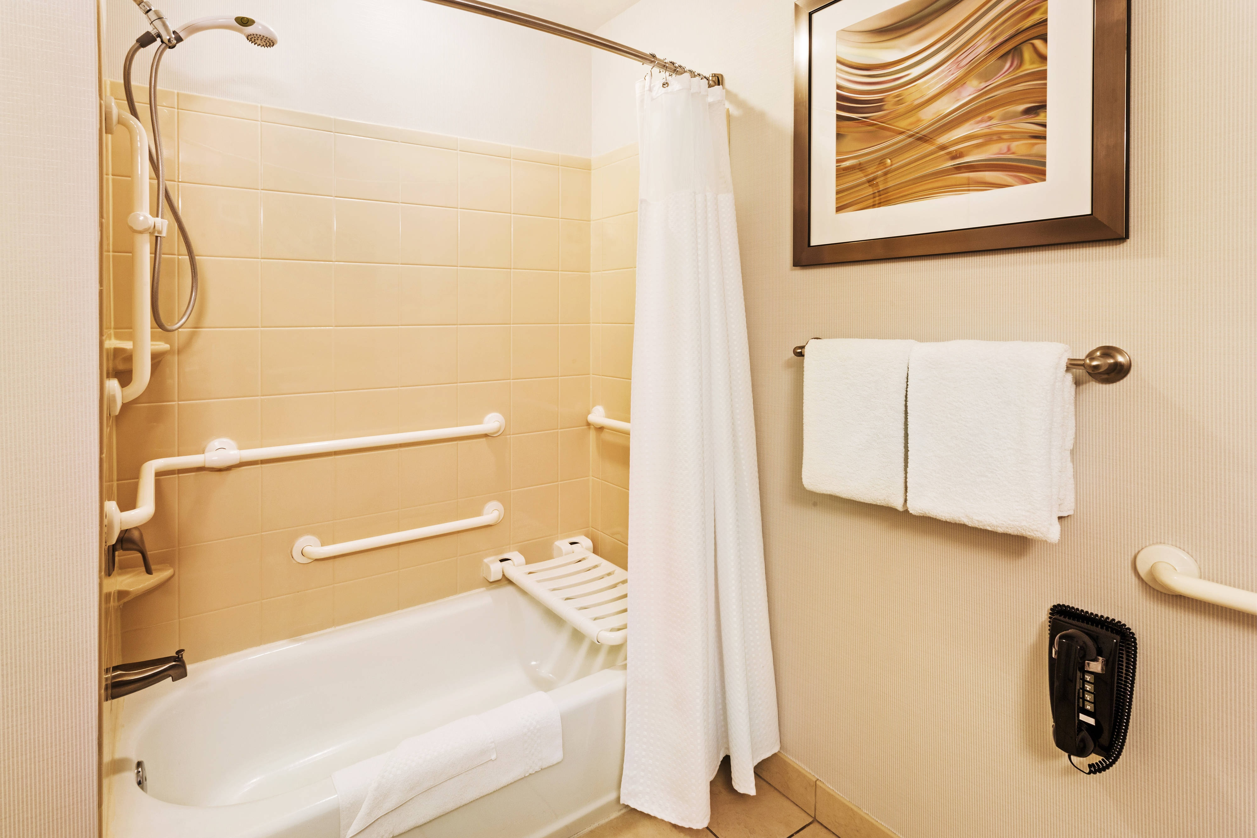 Accessible Roll-in Shower Bathroom