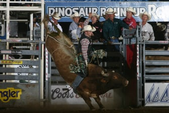 The Dinosaur Roundup Rodeo