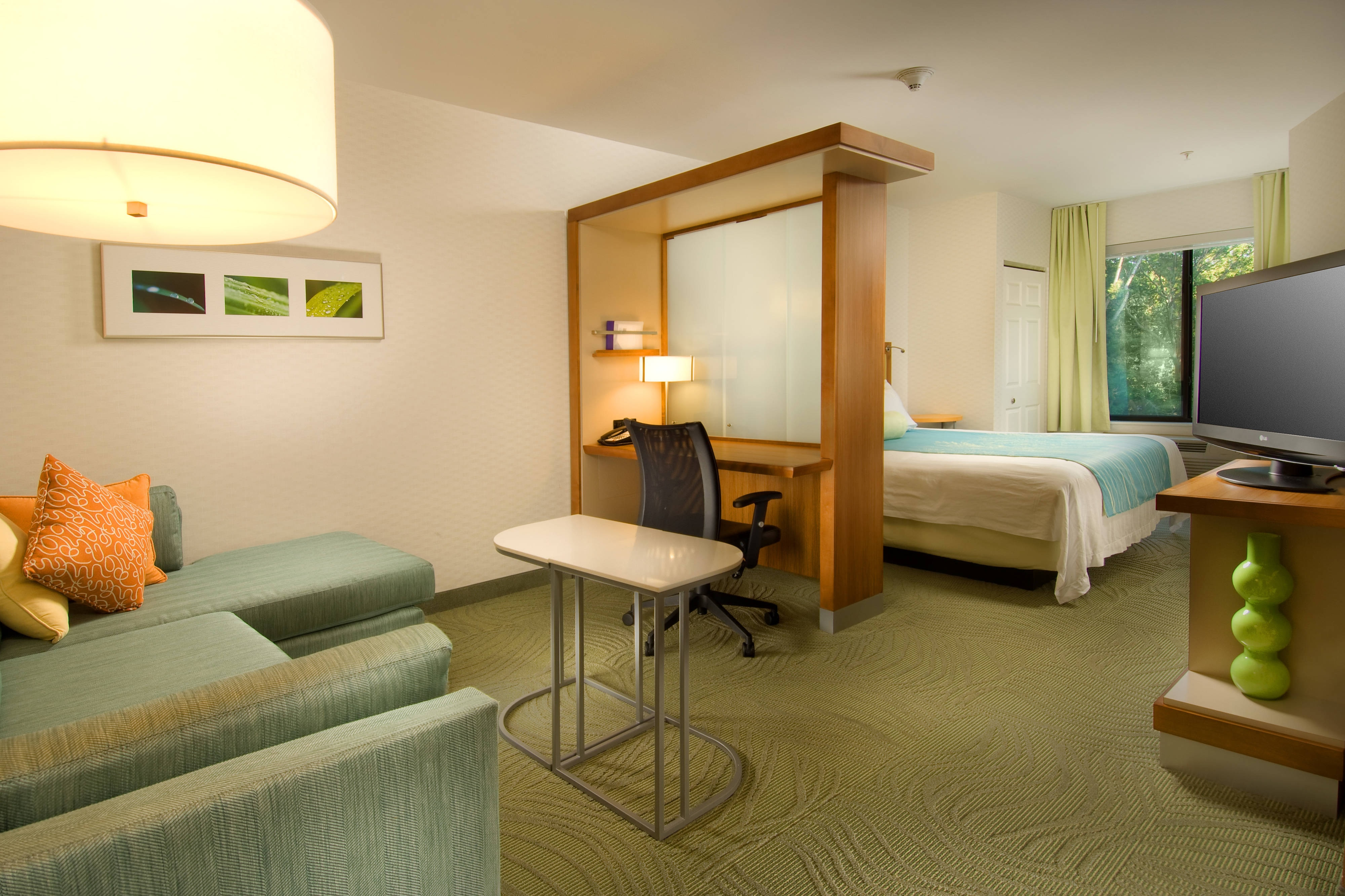 Alexandria Virginia Extended Stay Hotel Springhill