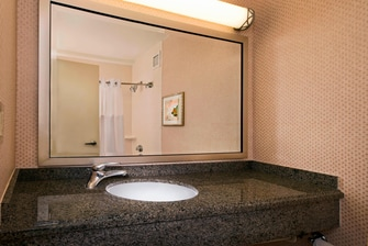 Center Tower Suite Bathroom