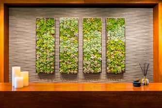 Spa Anjali Living Wall at The Westin Riverfront Beaver Creek