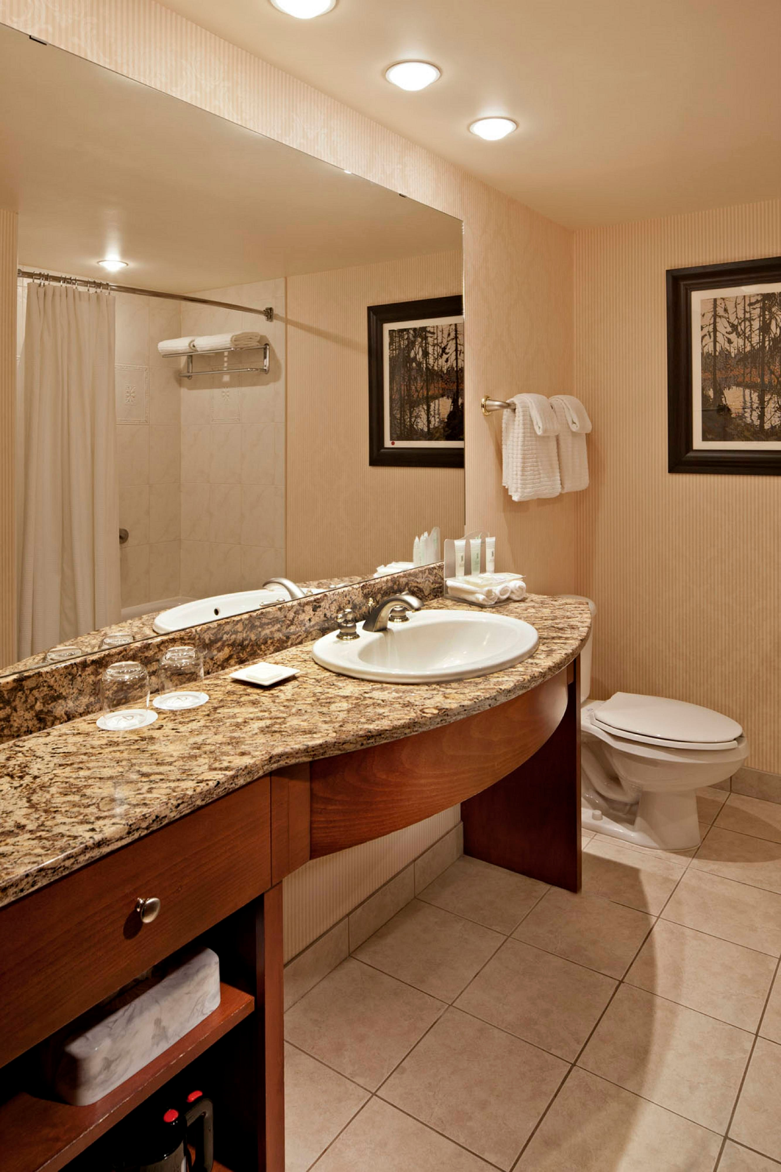 Standard Guest Room Bathroom