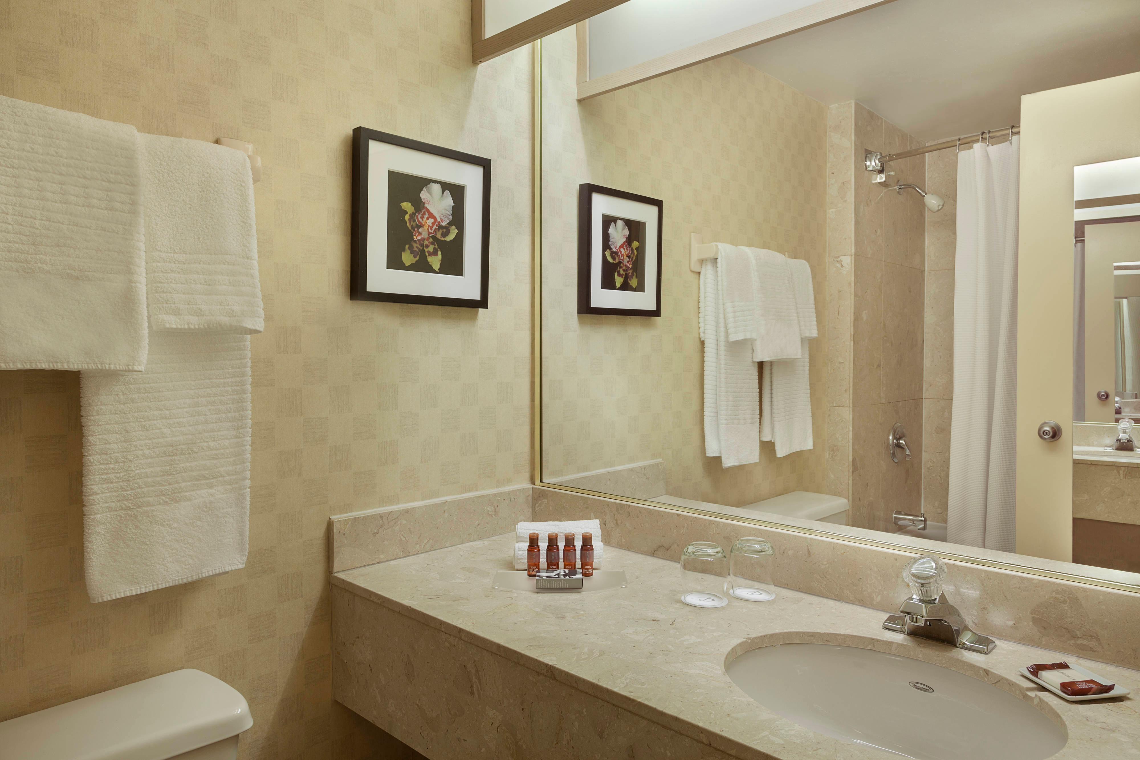 Premier Guest Bathroom