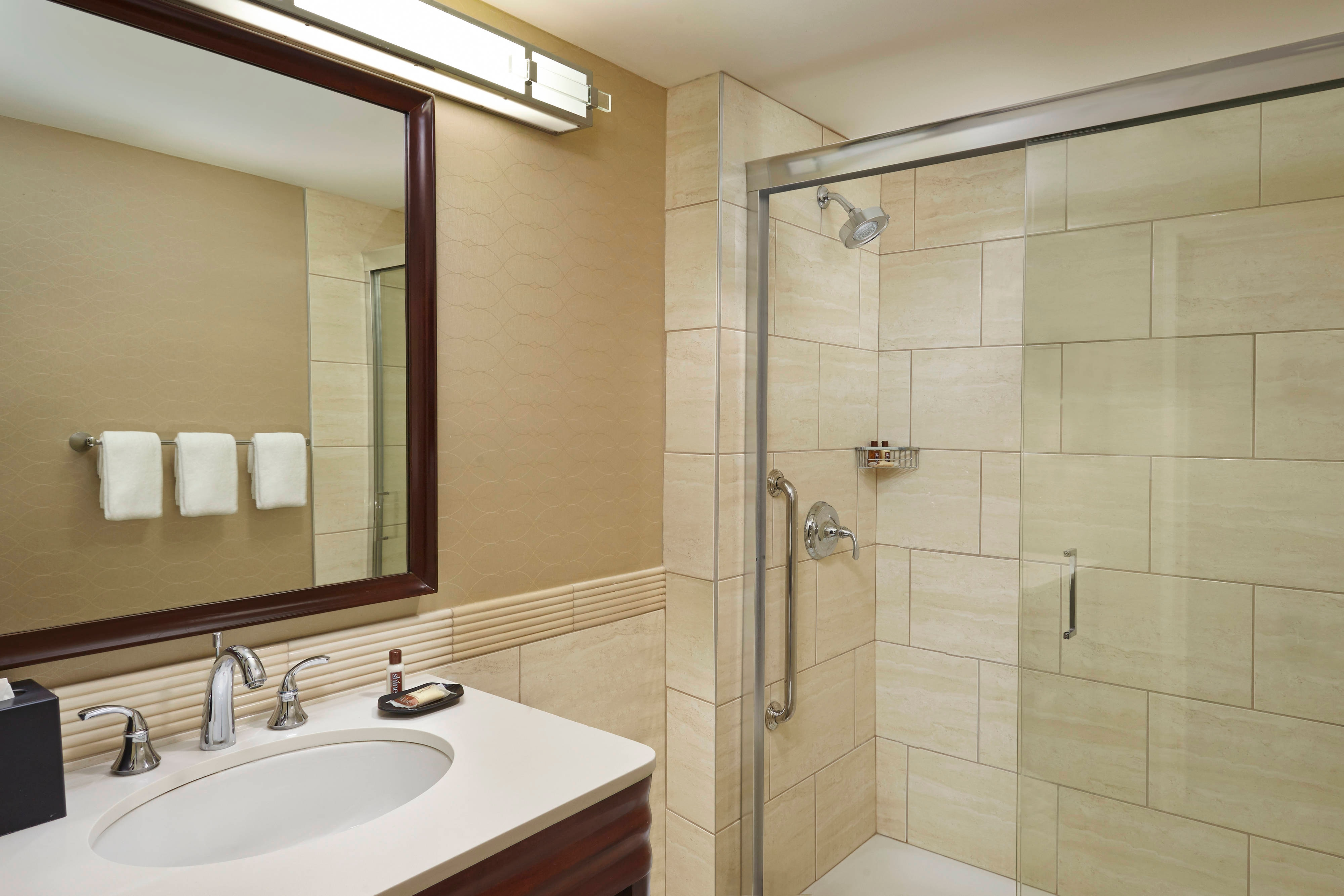 Guest Bathroom Full Stand Up Shower