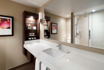 Club Guestroom Walk-in Shower