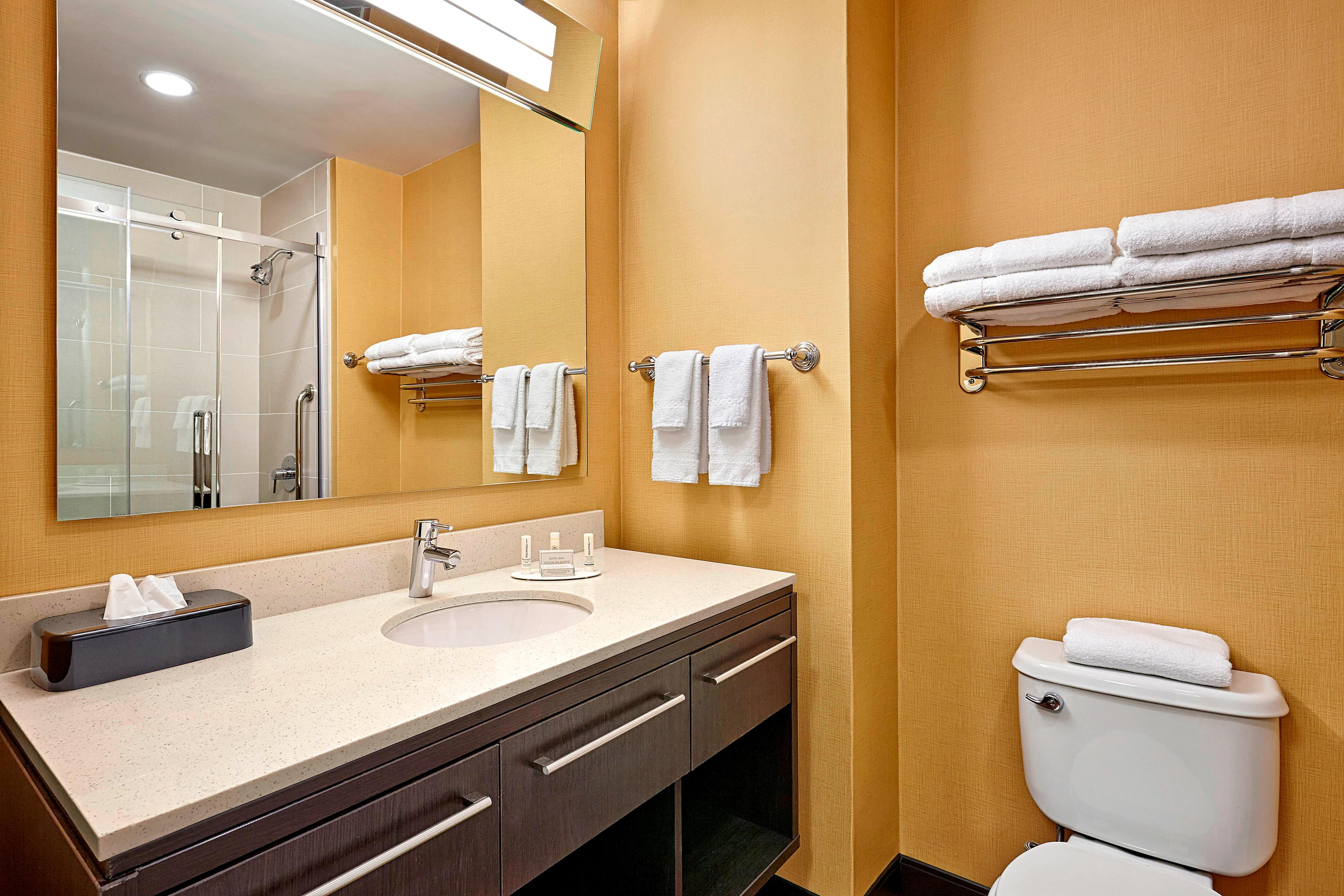 Suite Vanity & Bathroom Area