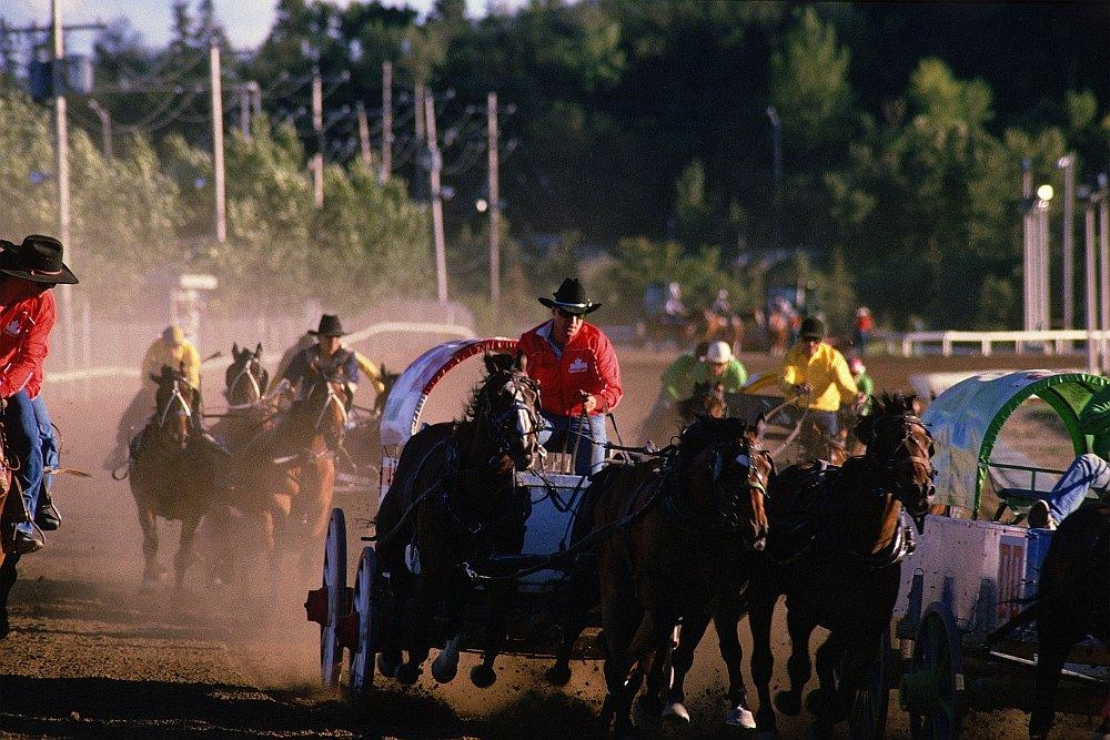 Calgary Stampeded Chuckwagon races hotels