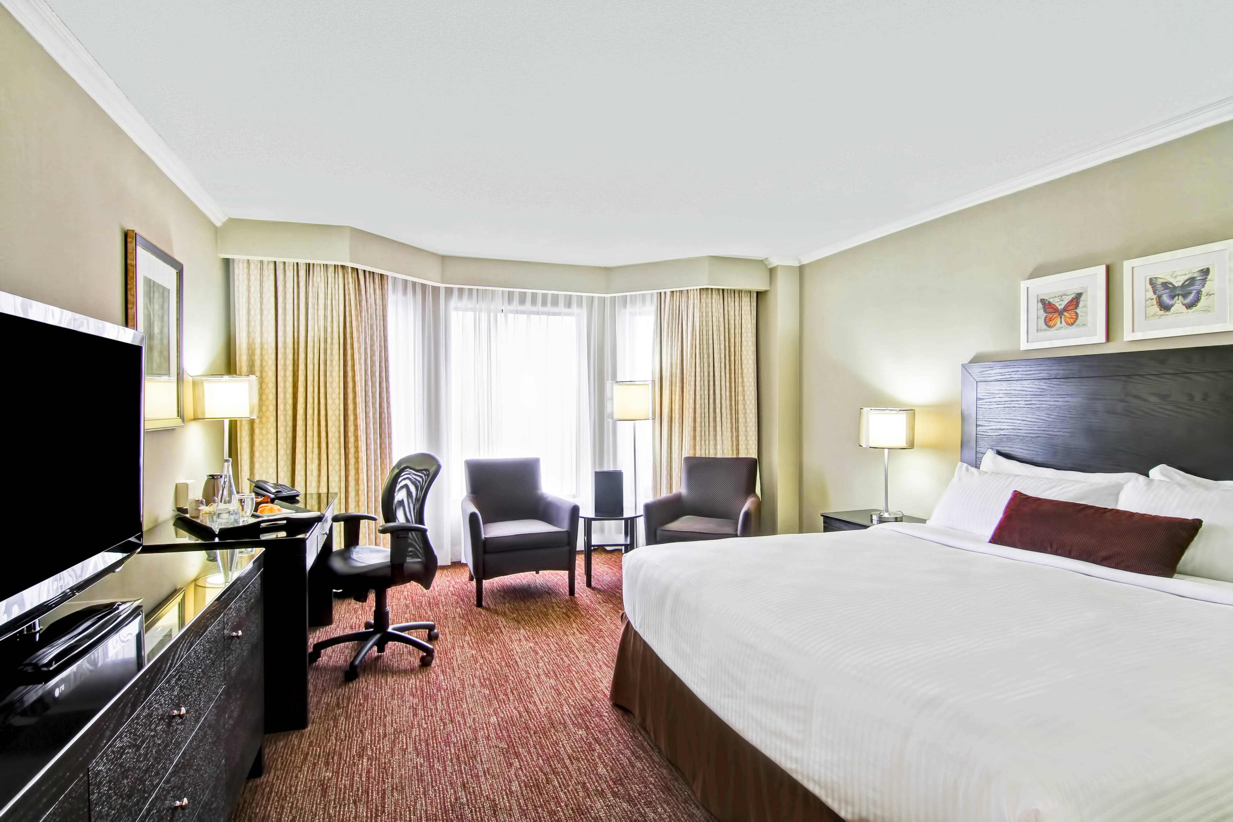 King Premier Guest Room