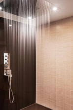 Business Suite Rainshower